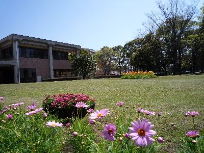 お花いっぱいの中庭