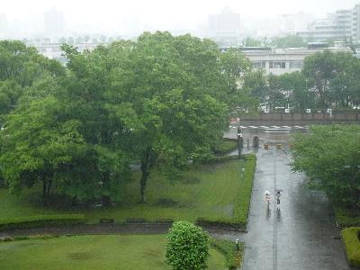 雨、雨、雨…
