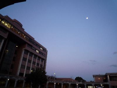 夕暮れ時。月が見えます。
