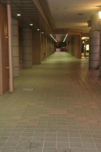 講義棟1Fの廊下はこんな雰囲気。