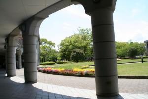 ぽかぽかと暖かい、お昼休みの大学は癒しの場です。